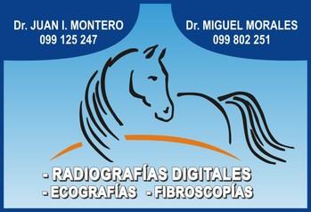 Laboratorio Montero y Morales